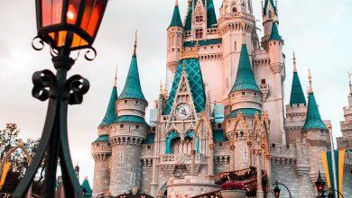 Saiba mais sobre o parque temático Disney's Magic Kingdom